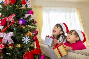 クリスマスツリーを飾って遊ぶ姉妹の素材 [FYI01075128]