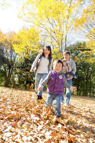 秋の公園で遊ぶ4人家族の素材 [FYI01075136]