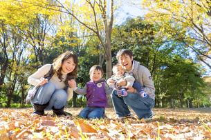 秋の公園で遊ぶ4人家族の素材 [FYI01075137]
