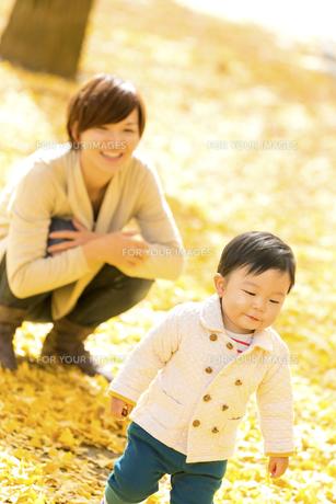 秋の公園で遊ぶ息子と母親の素材 [FYI01075139]