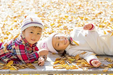 秋の公園で遊ぶ姉と弟の素材 [FYI01075142]