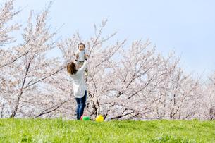 桜の咲く土手で息子を抱き上げる母の素材 [FYI01075145]
