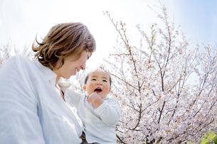 桜の咲く土手で母に抱かれる息子の素材 [FYI01075149]