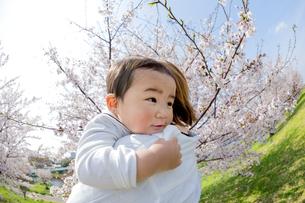 桜の咲く土手で母に抱かれる息子の素材 [FYI01075150]