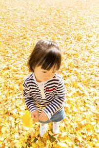 秋の公園で遊ぶ女の子の素材 [FYI01075181]