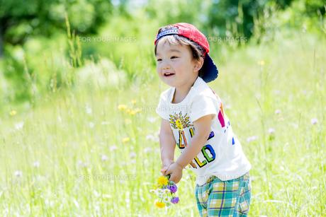 公園で野花を持つ男の子の素材 [FYI01075182]