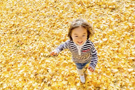 秋の公園で遊ぶ女の子の素材 [FYI01075187]