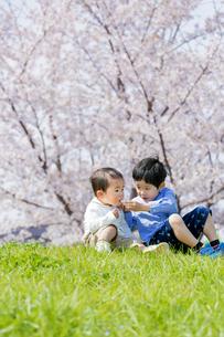 桜の咲く土手で遊ぶ兄と弟の素材 [FYI01075196]