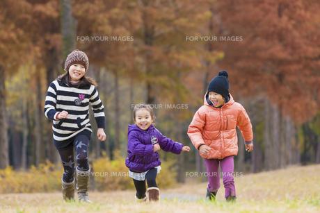 秋の公園を走る3人兄弟の素材 [FYI01075198]