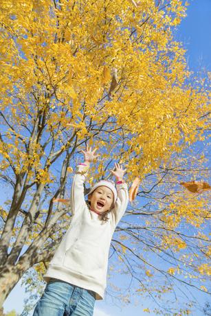 秋の公園で落葉を投げる女の子の素材 [FYI01075199]