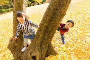 秋の公園で遊ぶ男の子と女の子の素材 [FYI01075205]