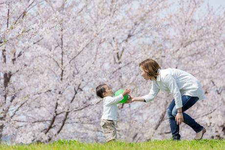 桜の咲く土手で遊ぶ母と息子の素材 [FYI01075210]