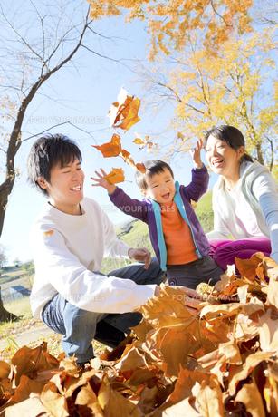 秋の公園で落葉で遊ぶ親子の素材 [FYI01075219]