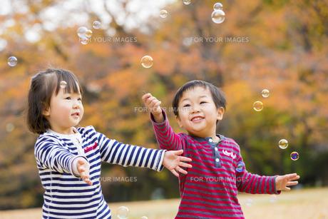 秋の公園でシャボン玉を追う男の子と女の子の素材 [FYI01075220]