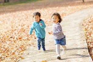 秋の公園を走る男の子と女の子の素材 [FYI01075240]