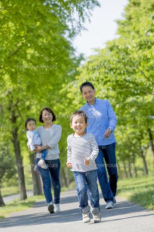 新緑の公園を歩く4人家族の素材 [FYI01075248]