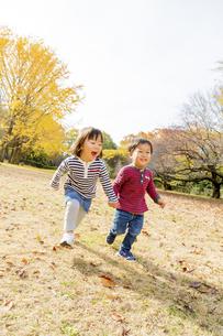 秋の公園を走る男の子と女の子の素材 [FYI01075263]