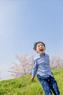 桜の咲く土手で遊ぶ男の子の素材 [FYI01075265]