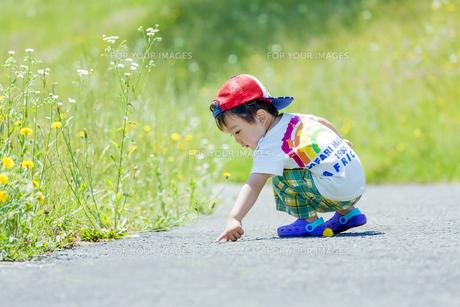 公園で遊ぶ男の子の素材 [FYI01075278]