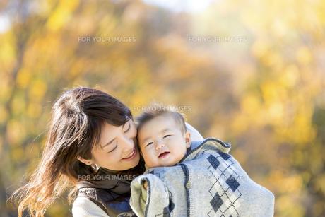 秋の公園で息子を抱く母親の素材 [FYI01075295]