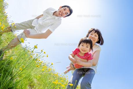 野花の咲く丘で遊ぶ親子の素材 [FYI01075299]