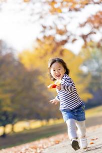 秋の公園を落葉を持って走る女の子の素材 [FYI01075307]