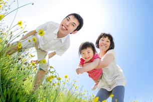 野花の咲く丘で遊ぶ親子の素材 [FYI01075314]