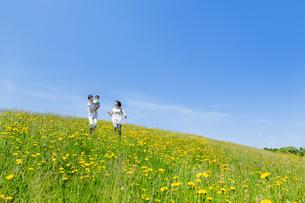 野花の咲く丘で遊ぶ親子の素材 [FYI01075321]