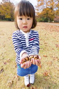 秋の公園でどんぐりを持つ女の子の素材 [FYI01075331]