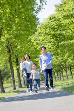 新緑の公園を歩く4人家族の素材 [FYI01075344]
