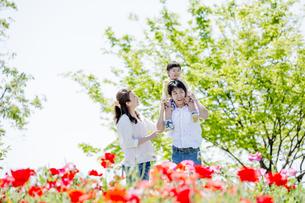 公園で遊ぶ家族の素材 [FYI01075387]