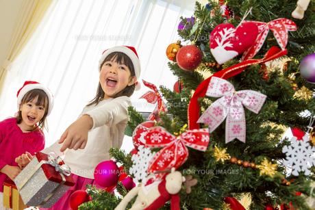 クリスマスツリーを飾って遊ぶ姉妹の素材 [FYI01075408]