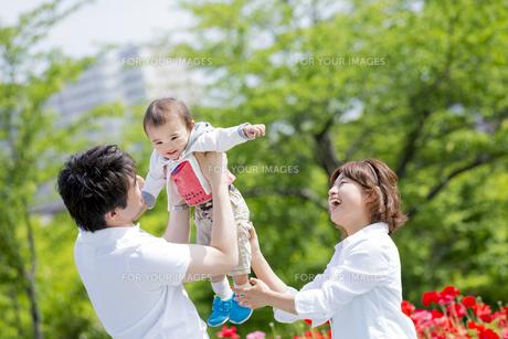 公園で息子を抱き上げる両親の素材 [FYI01075482]