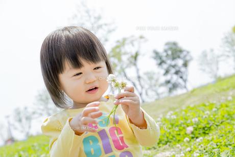 公園で花を見る女の子の素材 [FYI01075551]