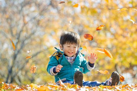 紅葉の公園で遊ぶ男の子の素材 [FYI01075556]