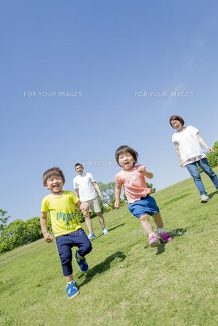 新緑の公園を走る4人家族の素材 [FYI01075559]