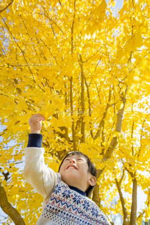 紅葉の公園で遊ぶ男の子の素材 [FYI01075583]
