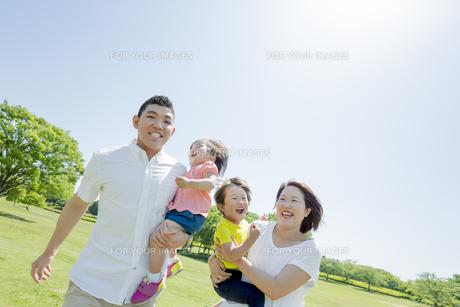 新緑の公園を歩く4人家族の素材 [FYI01075584]
