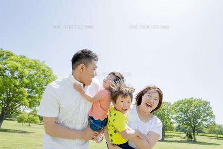 新緑の公園を歩く4人家族の素材 [FYI01075593]