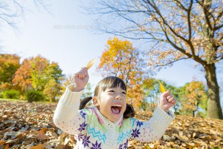 紅葉の公園で葉っぱを持って笑う女の子の素材 [FYI01075596]