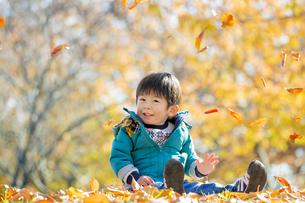紅葉の公園で遊ぶ男の子の素材 [FYI01075597]