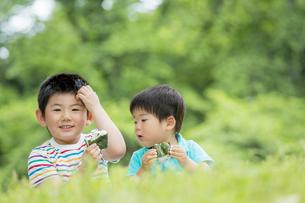 新緑の公園でおにぎりを食べる兄弟の素材 [FYI01075598]
