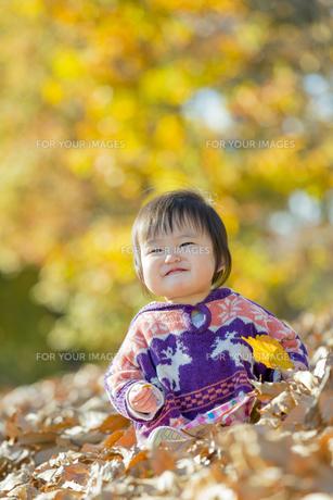 紅葉の公園で遊ぶ女の子の素材 [FYI01075610]