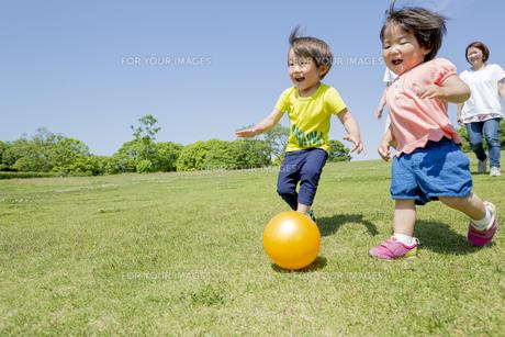 新緑の公園を走る4人家族の素材 [FYI01075626]