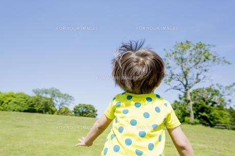 新緑の公園を走る男の子の素材 [FYI01075635]