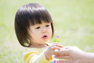 公園で母親から花をもらう娘の素材 [FYI01075653]