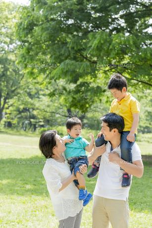 新緑の公園で遊ぶ4人家族の素材 [FYI01075659]