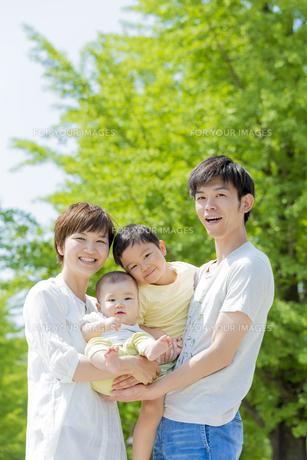 新緑の公園で遊ぶ4人家族の素材 [FYI01075673]