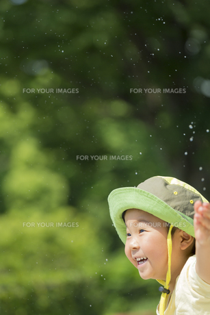 初夏の公園で水遊びをする男の子の素材 [FYI01075674]
