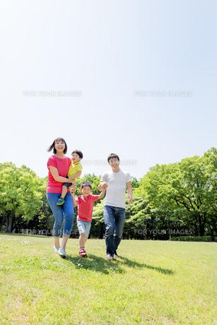 新緑の公園を歩く4人家族の素材 [FYI01075676]